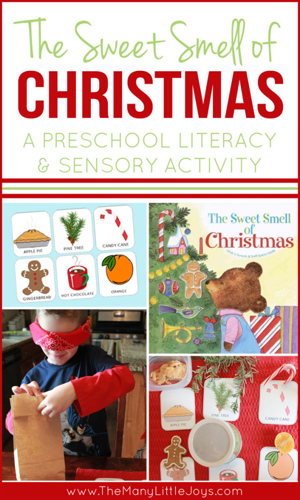 The Sweet Smell of Christmas: A Preschool Activity - The Many ...