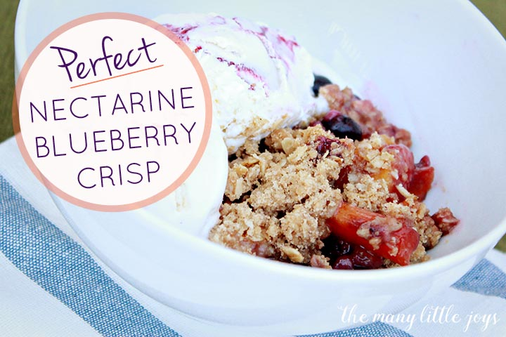 Perfect Nectarine Blueberry Crisp - The Many Little Joys